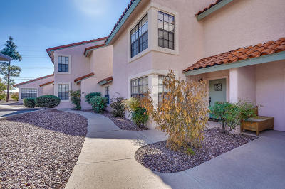 Tucson Condo For Sale: 6415 N Tierra De Las Catalinas #38