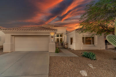 Tucson Single Family Home For Sale: 5208 N Spring View Drive