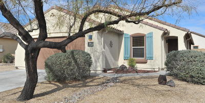 Marana Single Family Home For Sale: 11280 W Harvester Drive