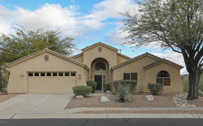 Pima County Single Family Home For Sale: 4446 N Saddle View Drive