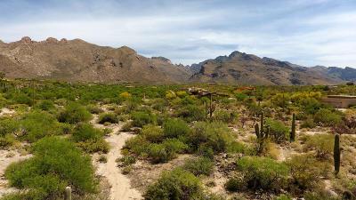 Tucson Residential Lots & Land For Sale: 1307 E Desert Garden Drive #138