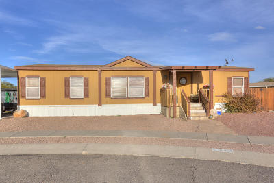 Pima County Manufactured Home For Sale: 5544 N Jusnic Court