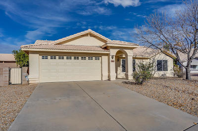 Tucson Single Family Home For Sale: 9271 E Wide Creek Way