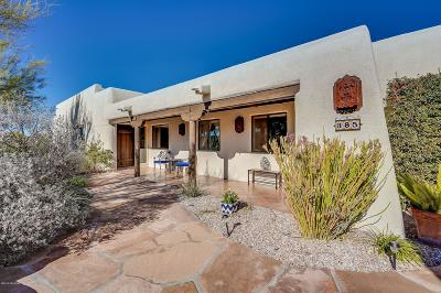 Tucson Single Family Home For Sale: 385 N Tanque Verde Loop Road