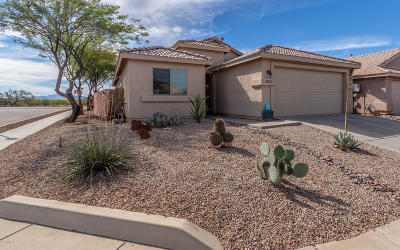 Tucson Single Family Home For Sale: 10392 E Rose Hill Street