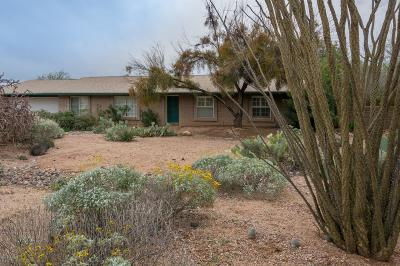Pima County, Pinal County Single Family Home For Sale: 3572 E Nugget Canyon Place