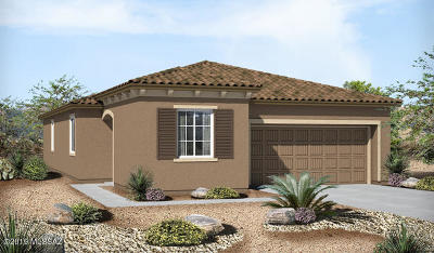 Tucson Single Family Home For Sale: 39316 S Trifecta Drive