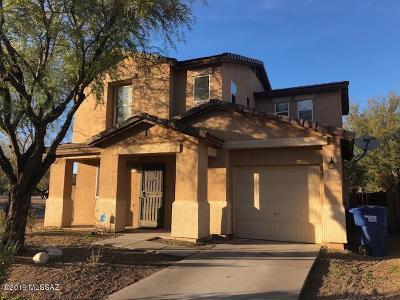 Tucson Single Family Home For Sale: 4245 E Deer Dancer Way
