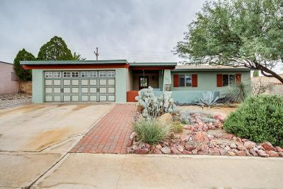 Tucson Single Family Home For Sale: 9630 E Shiloh Street