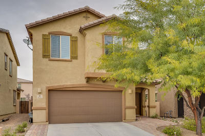 Sahuarita Single Family Home For Sale: 674 W Calle Ocarina