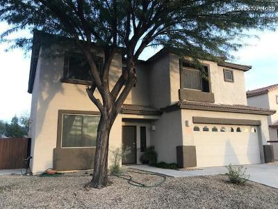 Tucson Single Family Home For Sale: 8239 S Placita Bilbao