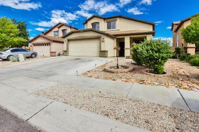 Tucson Single Family Home For Sale: 6969 S Camino Secreto