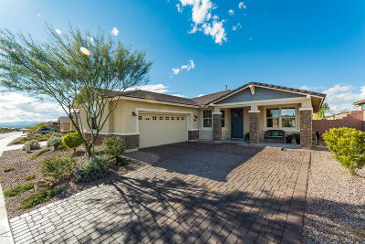 Marana Single Family Home For Sale: 14219 N Golden Barrel Pass