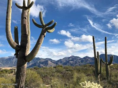 Oro Valley Residential Lots & Land For Sale: 14193 N Silver Cloud Drive #125