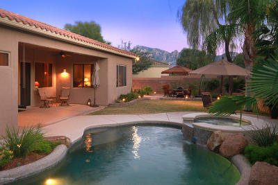 Oro Valley Single Family Home Active Contingent: 13879 N Bentwater Drive
