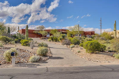 Tucson Single Family Home For Sale: 1451 N Coral Bells Drive