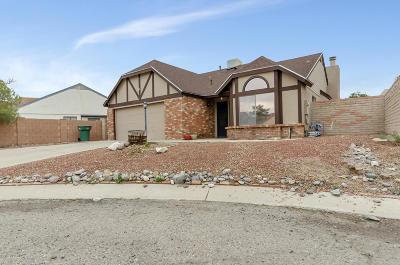 Single Family Home For Sale: 7848 N Kristin Place