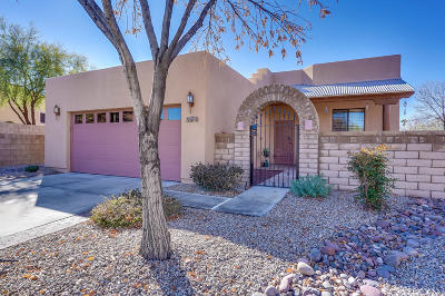 Tucson Single Family Home For Sale: 256 S Sycamore Creek Place