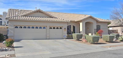 Oro Valley Single Family Home For Sale: 12481 N Forest Lake Way