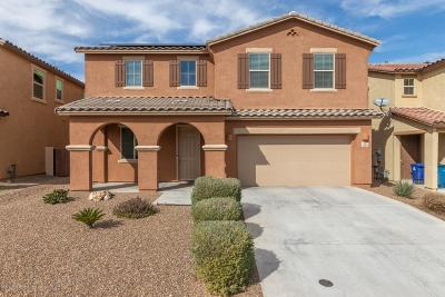 Sahuarita Single Family Home For Sale: 836 W Calle Ocarina