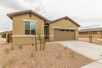 Single Family Home For Sale: 7240 S Paseo Monte De Oro