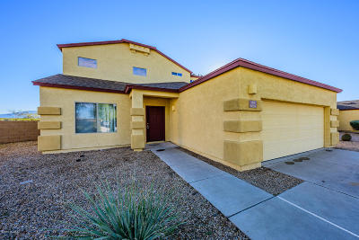 Pima County Single Family Home For Sale: 6655 S Avenida Del Arrabal