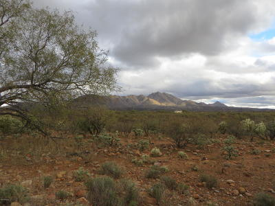 Rio Rico Residential Lots & Land For Sale: 1792 Laponia Court #15