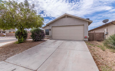 Tucson Single Family Home For Sale: 2413 W Tyler River Drive
