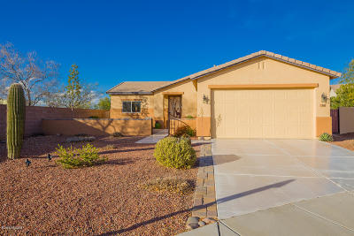 Tucson Single Family Home For Sale: 3549 E Silver Buckle Place