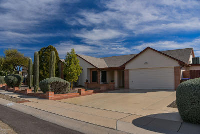 Tucson Single Family Home For Sale: 4741 W Condor Drive