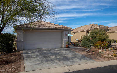 Pima County Single Family Home For Sale: 13489 N Holly Grape Drive