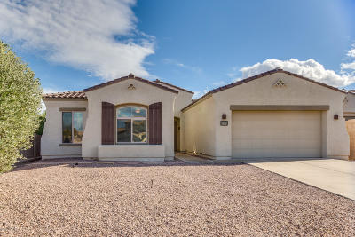 Pima County Single Family Home For Sale: 7846 N Blakey Lane