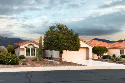 Oro Valley Single Family Home Active Contingent: 13956 N Trade Winds Way