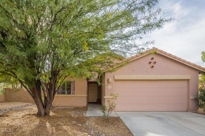 Pima County Single Family Home For Sale: 23 W Eric Dorman Street