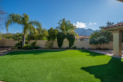Oro Valley Single Family Home For Sale: 9782 N Golden Sun Drive