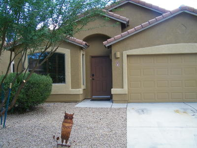 Sahuarita Single Family Home For Sale: 916 E Ashburn Mountain Drive