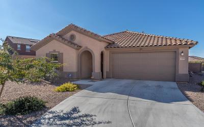 Tucson Single Family Home For Sale: 10190 E Placita De Dos Pesos