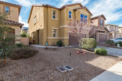 Sahuarita Single Family Home For Sale: 667 W Calle Canto Sereno