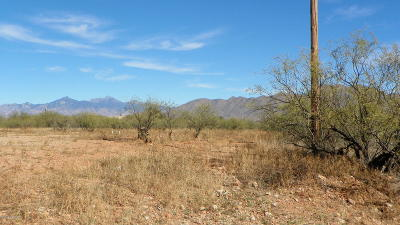 Rio Rico Residential Lots & Land For Sale: 1405 Raquel Court #45