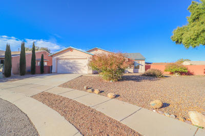 Tucson Single Family Home For Sale: 10187 E Sunrise Meadow Place