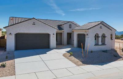 Single Family Home For Sale: 11806 N Raphael Way N