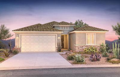 Single Family Home For Sale: 11995 N Raphael Way N