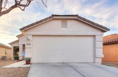 Pima County Single Family Home For Sale: 6890 S Creek Run Avenue