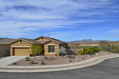 Oro Valley Single Family Home For Sale: 13903 N Big Wash Overlook Place