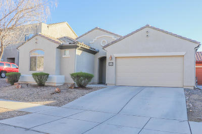 Single Family Home For Sale: 10574 E Desert Drifter Place