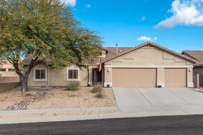 Tucson Single Family Home For Sale: 3737 E Northern Dancer Road