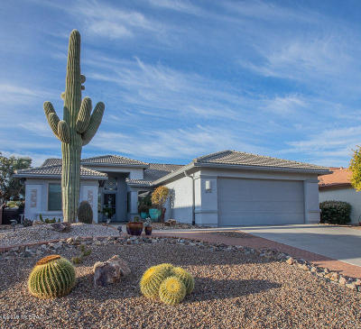 Green Valley Single Family Home For Sale: 2036 E Desert Fox Drive