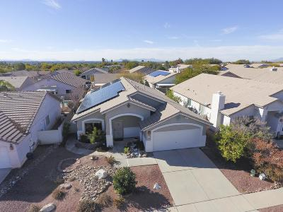 Tucson Single Family Home For Sale: 3076 S Elinore Drive
