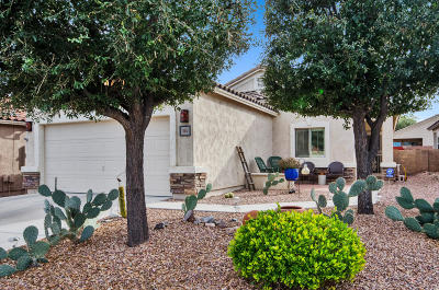 Sahuarita Single Family Home For Sale: 1367 W Calle Luis Maria
