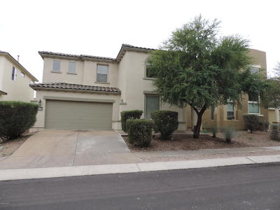 Sahuarita Single Family Home Active Contingent: 98 E Camino Del Abedul